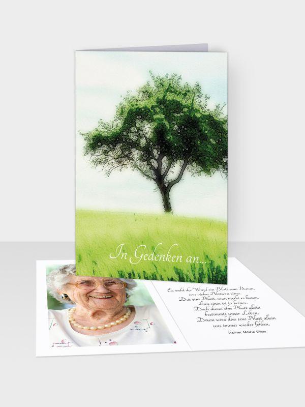 Erinnerungsbild - Kleinere Klappkarte mit Trauerbild/Sterbebildchen (74 x 105 mm)   Motiv Grüne Wiese   EB_021
