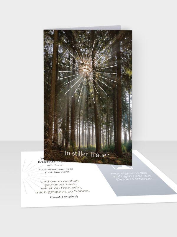 Erinnerungsbild - Kleinere Klappkarte mit Trauerbild/Sterbebildchen (74 x 105 mm)   Motiv Federn   EB_035
